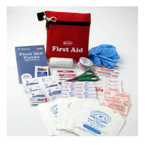 45 Piece First Aid Kit in Travel Pouch